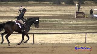 473S Andrea Baxter on Laguna Seca Open Beginner Novice Show Jumping Twin Rivers Ranch April 2015