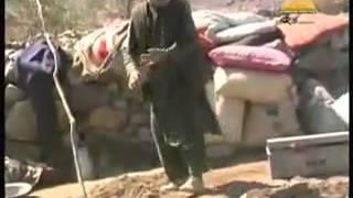 Pashto  Shaista sandara tahir shabab