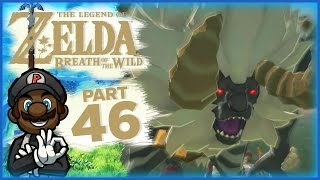 """The Legend of Zelda: Breath of the Wild - Part 46 