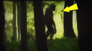 5 Humanoids Caught On Camera & Spotted In Real Life!