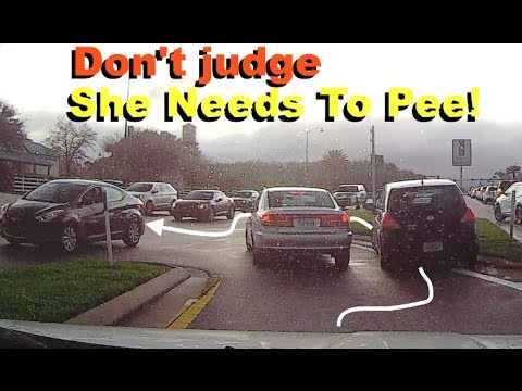 She needs to pee! | Dash Cam | Old Town, Florida