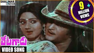 Vetagadu || Aku Chaatu Pinda Thadise Video Song || NTR, Sridevi