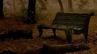 آهنگ زیبای محمد اصفهانی - Mohammad Esfahani