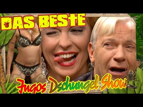 Xxx Mp4 Dschungelshow Tag 6 Highlights Ikke Hüftgold Biggi Bardot Carsten Spengemann Jo Groebel 3gp Sex