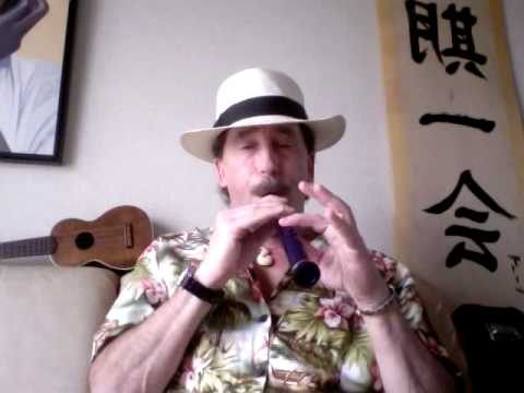 Funky Blues on a Blue Xaphoon® Pocket Sax™