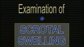 Examination of scrotal swelling