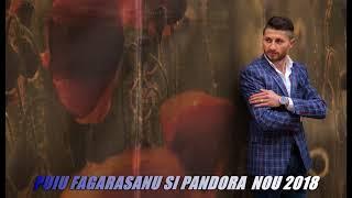 Toate dorurile mele  de dragoste LIVE   Puiu Fagarasanu si Pandora NOU 2018