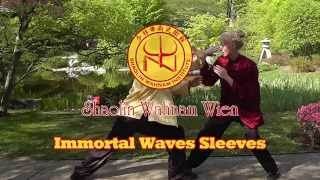 Wahnam Tai Chi Chuan - Kampfsequenz 1 - Immortal Waves Sleeves