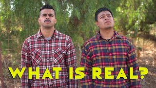What is Real? | David Lopez