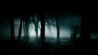 FOREST AT NIGHT - Crickets Owls Rain Wind in Trees - Nature Sounds To Relax Study Sleep 🎧 100% RELAX