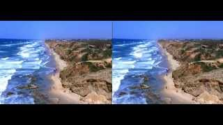 Albatross 3D VR Video