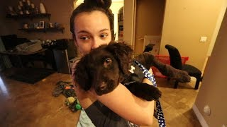 LITTLE SISTER SURPRISES ME WITH NEW PUPPY!!