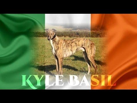 Kyle Basil