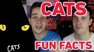 Cats Fun Facts (Ganz großes Katzengejammer bei Webber!)