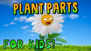 Plant Parts for Kids!