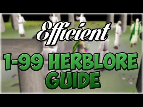 Oldschool Runescape EFFICIENT 1 99 Herblore Guide 300 600k Hr
