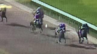 Jockeys Fix Horse Race At Louisiana Downs 7-29-16 The 6 horse wants to win but it's Jockey doesn't