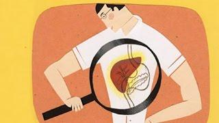 تنظيف الكبد من السموم في ٣ ايام