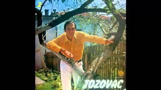 Predrag Zivkovic Tozovac - Igrale se delije - (Audio 1975) HD