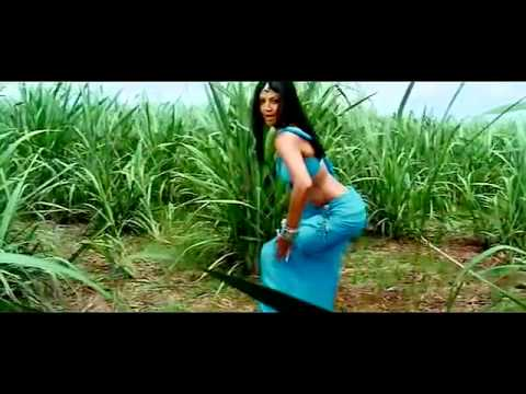 Hidi Video song