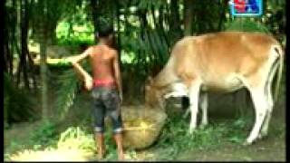 Bangla real kobita -Mayer ek dhar dudher dam