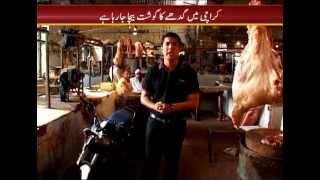 Sar-e-Aam (Donkey Meat in Karachi) PROMO
