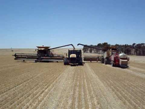 Harvest Glenvar 2007 Wheat Australia big lexion