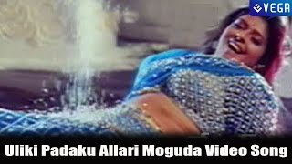 Major Chandrakanth Movie | Uliki Padaku Allari Moguda Video Song