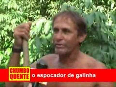 ESPOCADOR DE GALINHA
