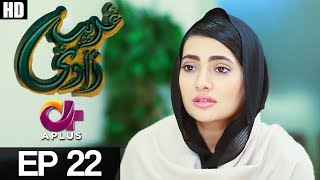 Ghareebzaadi - Episode 22 uploaded on 18-08-2017 5412 views