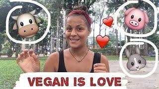 Vlogmas #1| VEGAN STORY | Jak jsem se stala vegankou