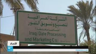 ظروف الحرب في العراق تلقي بظلالها على إنتاج التمور