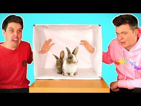 WHATS IN THE BOX Ft. Lazarbeam Muselk Loserfruit Crayator BazzaGazza and Marcus