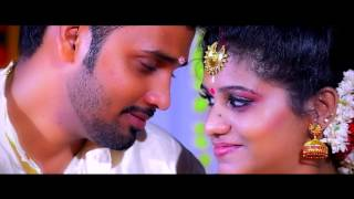 Neethu + Vipin - Kerala Hindu Wedding Highlights