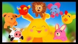 Apprendre les animaux en français - Titounis Découverte - Dessin animé et Comptines