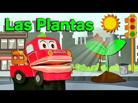 Aprendemos sobre Las Plantas Videos Educativos para Niños con Barney El Camión