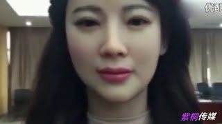 China reveals highly realistic Humanoid Robot (2016)