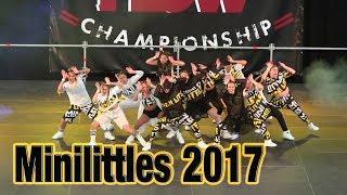 Minilittles -  HIP HOP DANCE CHAMPIONSHIP - The flow 2017