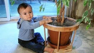 Baby proofing a flower pot