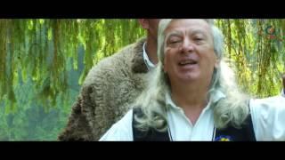 NEMURITORII - I-auzi cum mai joaca sarba (VIDEO OFICIAL 2017)