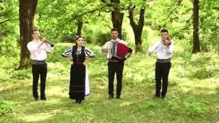 Anamaria Iorga - Frunza verde iasomie