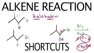 Alkene Reaction Shortcuts and Products Overview by Leah Fisch