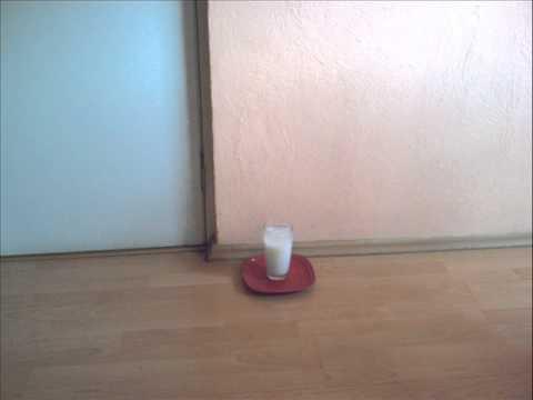 Vaso con agua y sal vidoemo emotional video unity - Vaso con agua ...