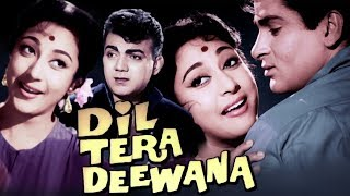 Dil Tera Deewana Full Movie in Colour | Shammi Kapoor Old Movie | Mala Sinha Old Classic Movie | HD