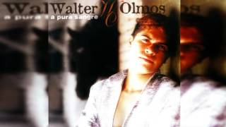 Métale corriente - Walter Olmos