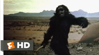 2001: A Space Odyssey (1968) - From Bone To Satellite Scene (1/6) | Movieclips