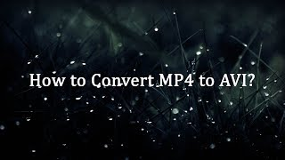 How to Convert MP4 to AVI?