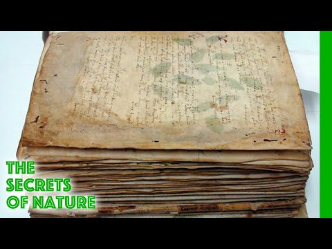 The Voynich Code The Worlds Most Mysterious Manuscript The Secrets of Nature