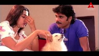 Nagarjuna Seducing Tabu Comedy Scene || Ninne Pelladata Movie || Nagarjuna, Tabu