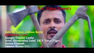 डल्ले कि बहिनी | Dalle Ki Bahini | श्री कृष्ण लुईटेल - Nepali song 2016/2073